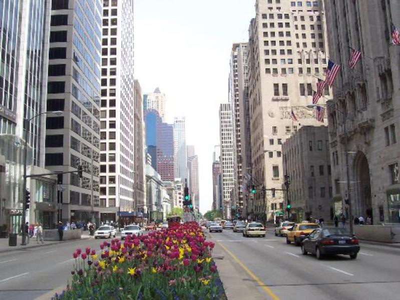 """4/9 IIC Chicago Events """"Anorexia The Real Causes: Blood Types and Trauma"""""""